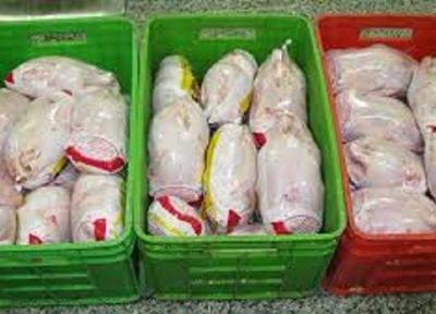 افزایش توزیع مرغ منجمد در آذربایجان شرقی